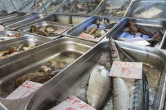 Fresh fish in the fish market - Greece Royalty Free Stock Photos