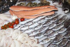 Fresh fish and fruits of the sea on fishmarket Stock Photo