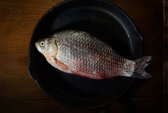Fresh fish in a frying pan on a black background. Fresh fish in a frying pan Stock Photos