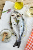 Fresh fish gilt-head bream dorade with salt and pepper Royalty Free Stock Images