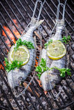 Fresh fish with herbs and lemon for grilling Royalty Free Stock Image