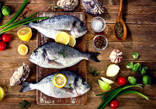 Fresh fish with herbs, spices and vegetables on  wooden backgrou Stock Images