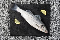 Fresh fish on ice on a black stone table Royalty Free Stock Images