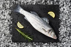Fresh fish on ice on a black stone table. Top view Royalty Free Stock Image