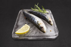 Fresh fish on ice. Stock Photography