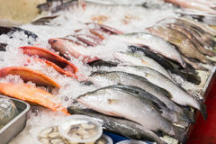 Fresh fish with ice in street seafood. Market in Thailand Royalty Free Stock Image