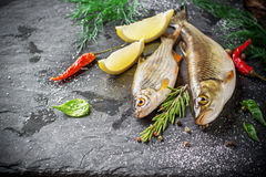 Fresh fish ide on a black stone slab surrounded by. Herbs, slices of lemon, peppers peas and salt. Selective focus. Top view Royalty Free Stock Photos