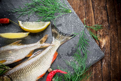 Fresh fish ide on a black stone slab surrounded by. Herbs, slices of lemon, peppers peas and salt. Selective focus. Top view Stock Image