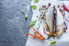 Fresh fish ide on a black stone slab surrounded by. Herbs, slices of lemon, peppers peas and salt. Selective focus. Top view Royalty Free Stock Image