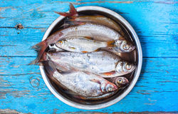 Fresh fish in  iron bowl on a wooden background Stock Image