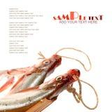 Fresh fish. Isolated on white background Stock Photo