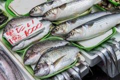 Fresh fish in Japanese market. 2 Stock Photo