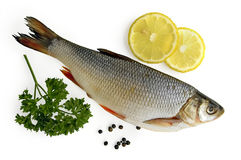 Fresh fish with lemon Royalty Free Stock Photography