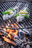Fresh fish with lemon and herbs on grill Royalty Free Stock Photos