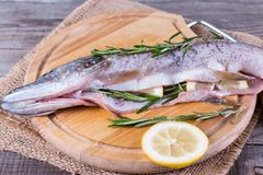 Fresh fish with lemon, lime, rosemary, salt and pepper on wooden board. Fresh fish with lemon, lime, rosemary, salt and pepper on wooden cutting board Stock Image