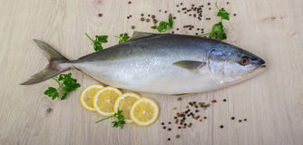 Fresh fish with lemon, parsley and spice on wooden cutting board isolated. On white Royalty Free Stock Photography
