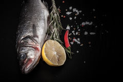 Fresh fish, lemon, pepper and rosemary on a black background Stock Image