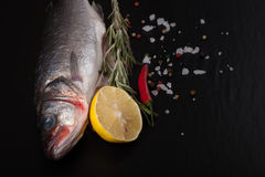 Fresh fish, lemon, pepper and rosemary on a black background. Ti Royalty Free Stock Photo