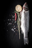Fresh fish, lemon, pepper and rosemary on a black background. Ti Royalty Free Stock Images