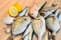 Fresh fish with lemon ready for cooking. Preparing delicious and tasty seafood meal. Uncooked Gilt-head sea bream, Sardines, Commo. N pandora, top view. Healthy royalty free stock images