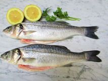 Fresh fish with lemon and spices on marble. Background stock images