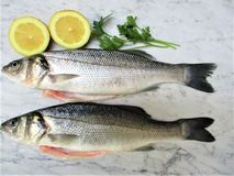 Fresh fish with lemon and spices on marble. Background stock photos