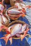 Fresh Fish at Long Hai fish market Royalty Free Stock Photos