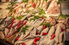 Fresh fish in the market. Athens, Greece stock image
