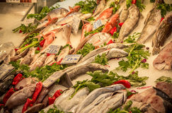 Fresh fish in the market. Athens, Greece stock photo