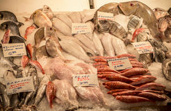 Fresh fish in the market. Athens, Greece stock images
