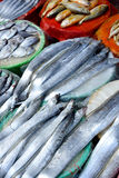 Fresh fish on market in colorful Stock Photography