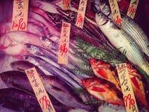Fresh fish on market display. Fresh fish in Japanese Royalty Free Stock Photo