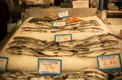 Fresh fish in the market. Athens, Greece royalty free stock photo