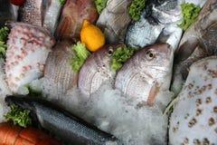 Fresh Fish Royalty Free Stock Photography