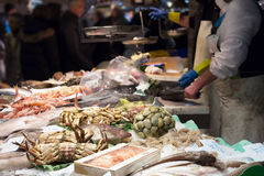 Fresh fish market pavilion Royalty Free Stock Photos