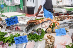 Fresh Fish Market Stall. Local Fish Market Stall selling fresh seasonal fish and seafood including sea bass fillets and whole fish and shellfish. A fishmonger stock image