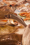 Fresh fish in a market stall Royalty Free Stock Photos