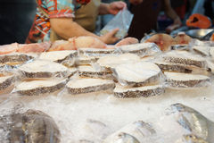 Fresh fish meat on ice. For sale in the market -Thailand Royalty Free Stock Image