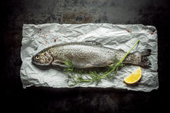 Fresh Fish Meat on a Paper with Herb and Lemon Royalty Free Stock Image