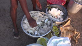 Fresh fish in metal pots with ice and salt in Tamil Nadu,India Stock Image