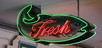 Fresh Fish neon sign Royalty Free Stock Image