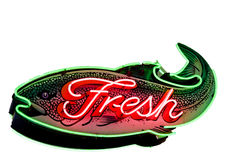 Fresh Fish Neon Sign Royalty Free Stock Photography