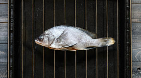 Fresh Fish Orata Over a Black stone with vegetables Stock Photo