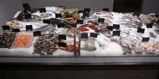 Fresh fish and other seafood. In supermarket Stock Photo