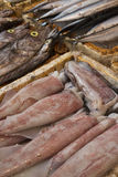 Fresh fish in an outdoor market in Guilin China Royalty Free Stock Photos
