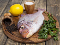 Fresh fish Pagr on a wooden board Stock Photography