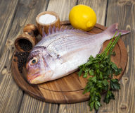 Fresh fish Pagr on a wooden board royalty free stock photography