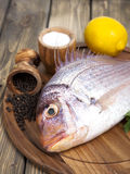 Fresh fish Pagr on a wooden board Royalty Free Stock Image