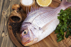 Fresh fish Pagr on a wooden board Stock Image