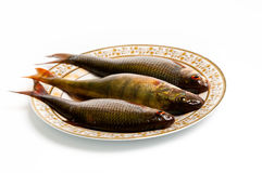 Fresh fish on plate. On white background Royalty Free Stock Photography